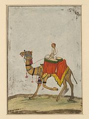180px-A_camel_with_its_rider_playing_kettle_drums.