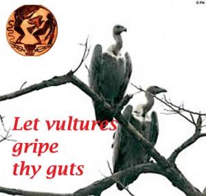 let-vultures