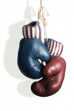 shutterstock_elections-255x383