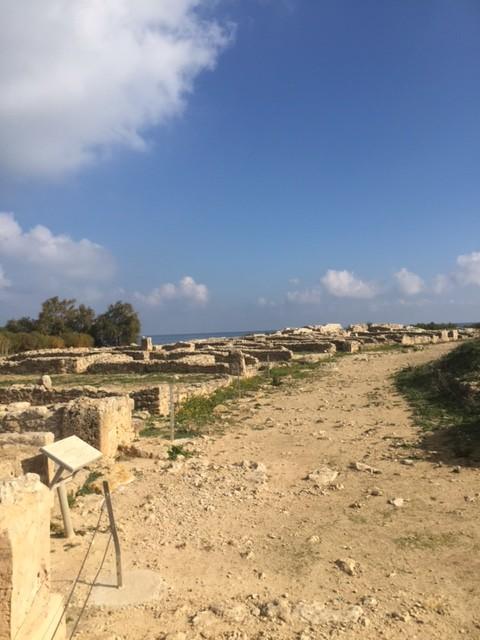 Kerkouane – unexplored, unexcavated