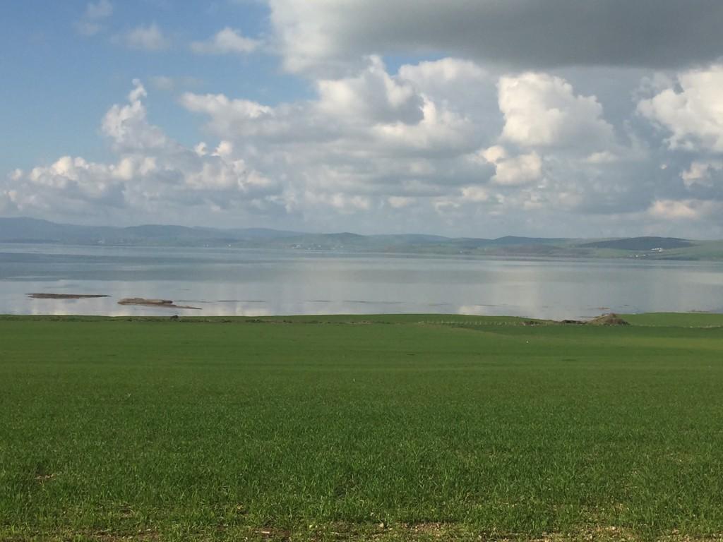 beautiful location overlooking lake