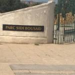 parc sidi bousaid