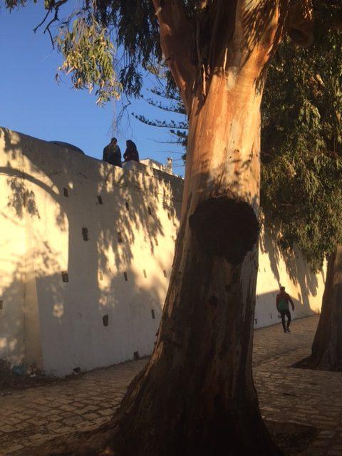 Rue Sidi Chebaane