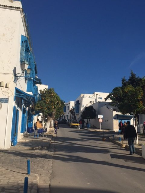 6-sidi-bou-snoozes-in-the-afternoon