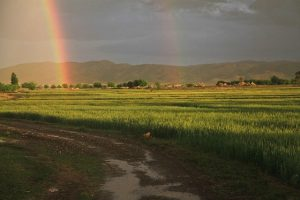 Two accounts from rural Afghanistan paint a picture of sudden, unaccustomed peace